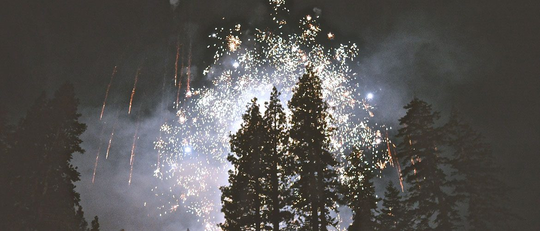 Silvesterfeuerwerk überm Wald